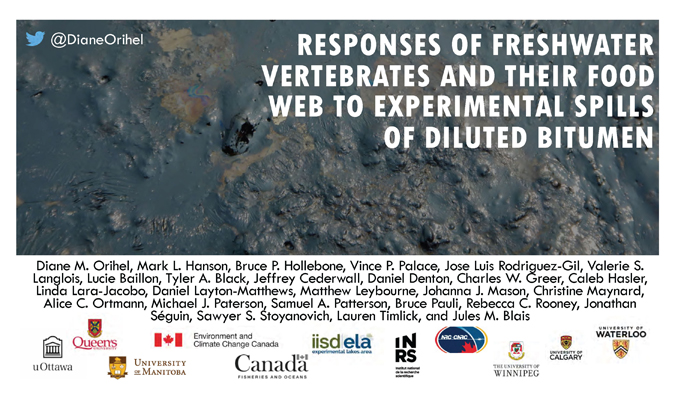 Title Slide: Responses of Freshwater Vertebrates and their Food Web to Experimental Spills of Diluted Bitumen